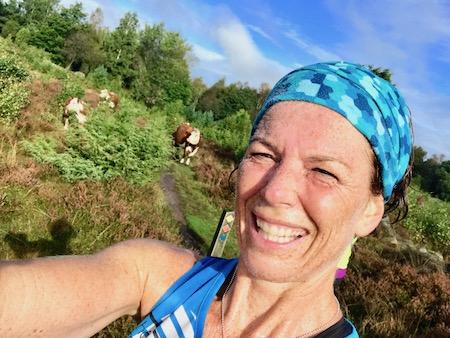 traillöpning bland kossor