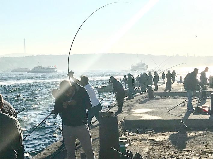 fiske Bosporen