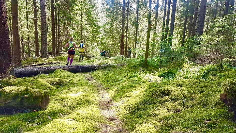 skogsbad, Hälsa mera, Malin Lundskog