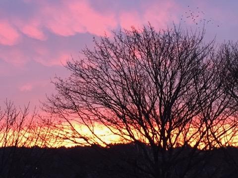 Så här enkelt är det att leva hälsosamt! himmel, rosa himmel, Göteborg, Askim