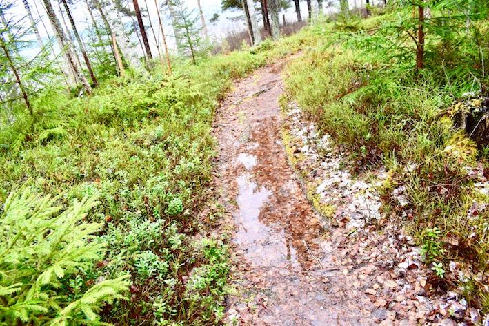 promenad, regn, Masesgården Malin Lundskog