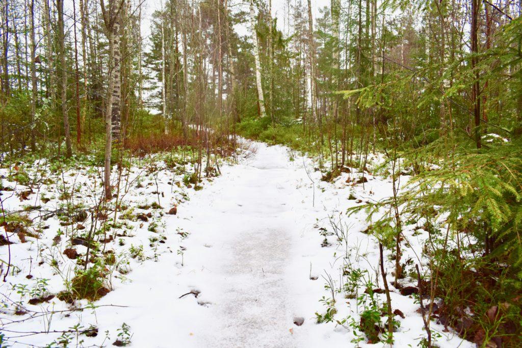 väder, vinter, vanor, promenad, Masesgården, Malin Lundskog