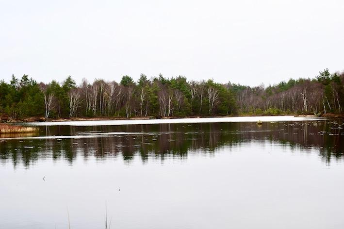 skogsbad natur sjö Malin Lundskog