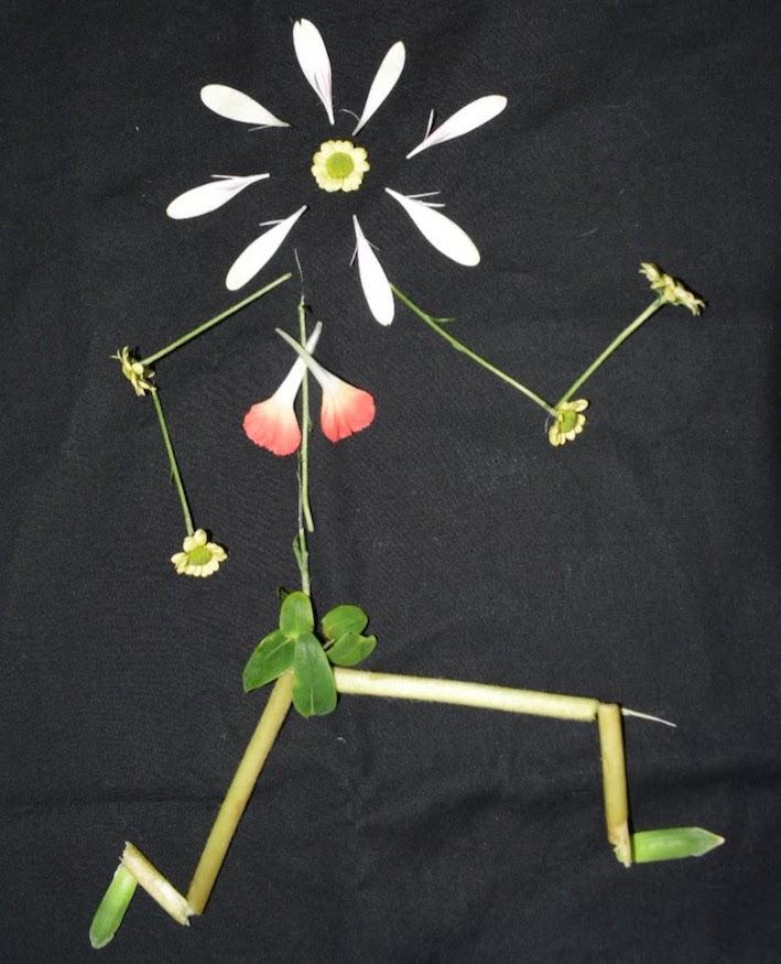 blommor, winterworkation, löpare, malin lundskog