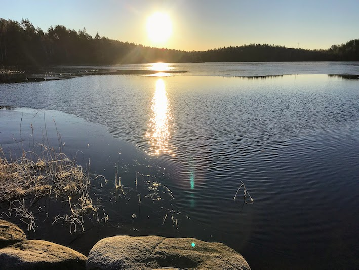 hållbar hälsa för både oss och naturen, Malin Lundskog
