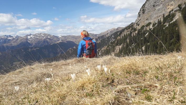 överlevnadstips från en arbetsnarkoman, Saras Italy, gästblogg, alptopp, natur