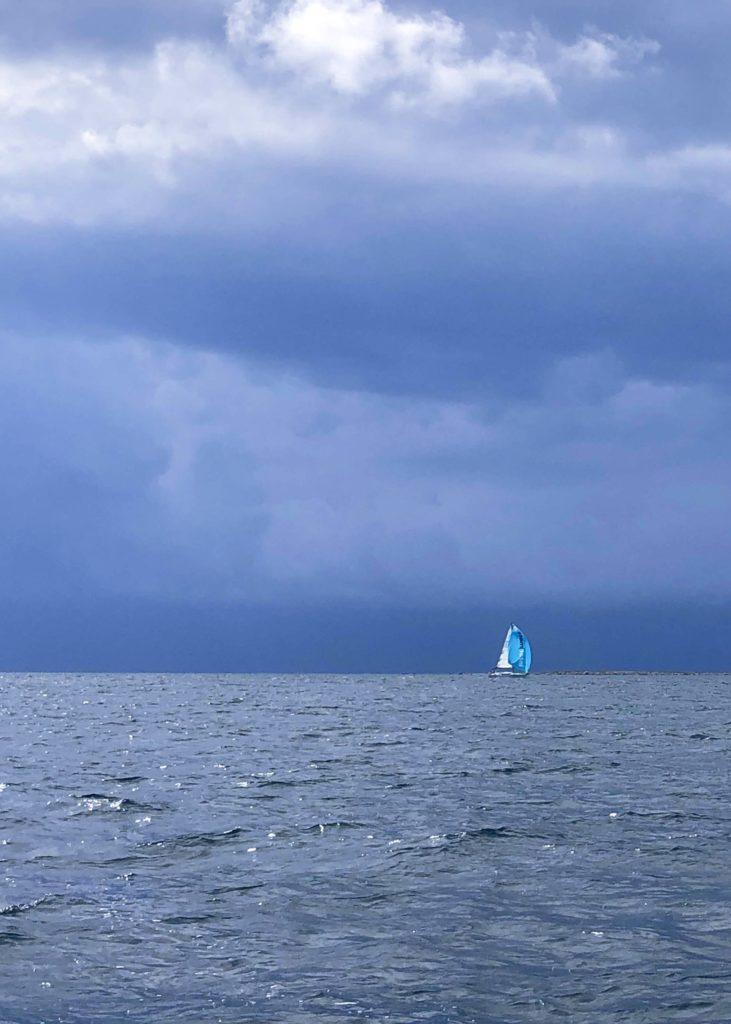 mitt 2020 om jag ska tro på mig själv, älska havet, havet, Nidingen, Malin Lundskog, naturen