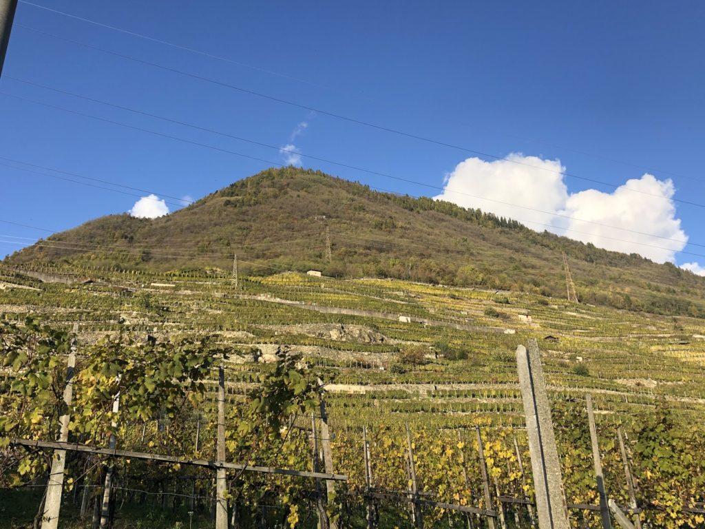 miljövänlig löpning i de italienska bergen, Valtellina Wine Trail, Malin Lundskog, trail, natur
