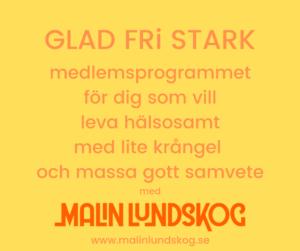 det hälsosamma systerskapet, mindset, systerskap, hälsa, Malin Lundskog, webbkurs