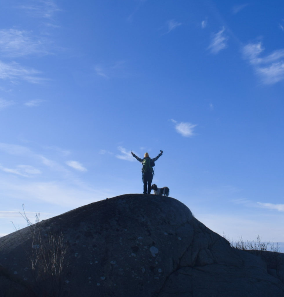 jag vill vara stark, berg, Göteborg, natur, springer spaniel