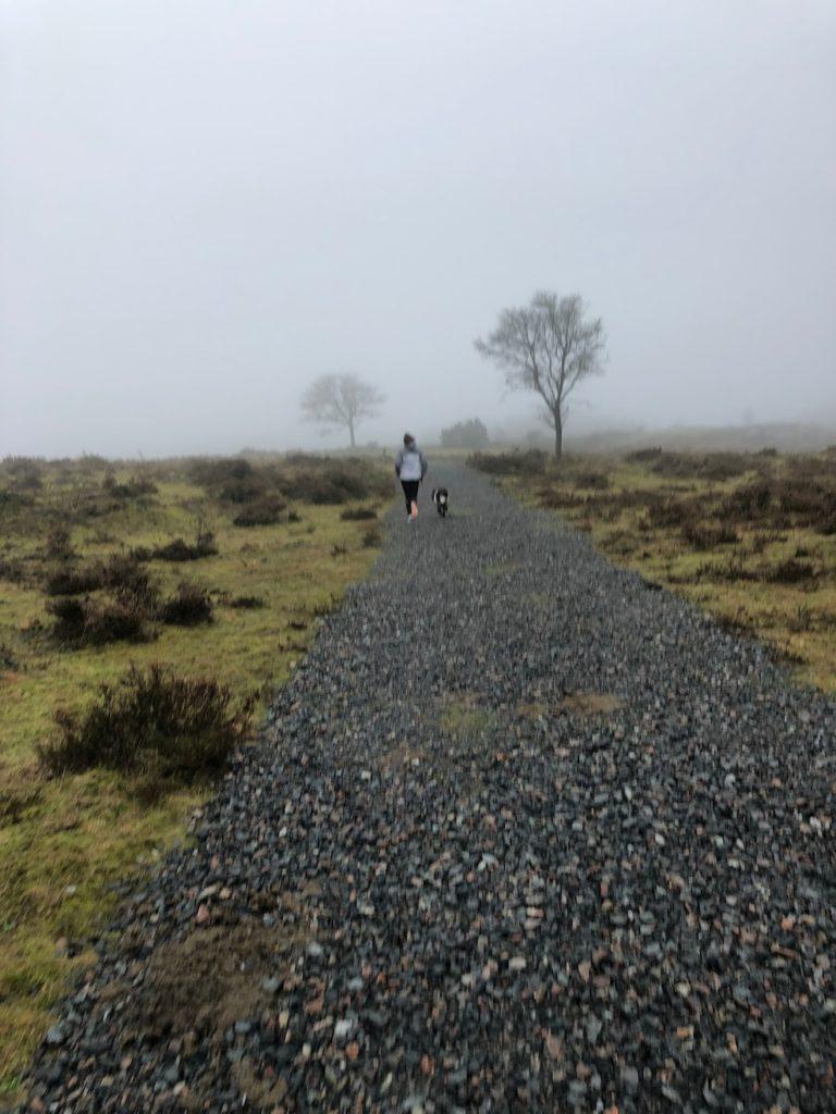 Uthållighet för kropp, knopp och själ, löparglädje, dimma, springa med hund