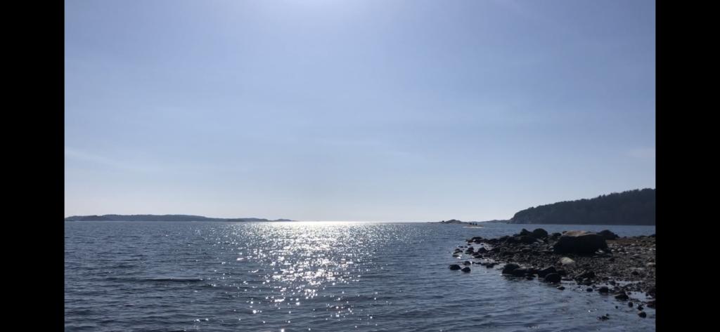 stärk immunförsvaret, naturen havet, Göteborg