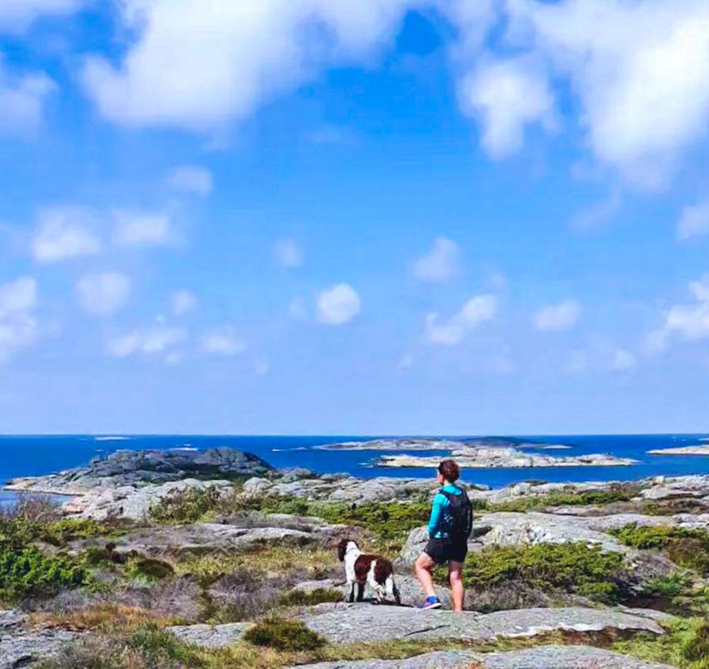 Därför är utomhus och rörelseglädje en oslagbar kombo, utonjut, västkusten, promenad, hundpromenad, havet, Öckerö, springerspaniel, utsikt