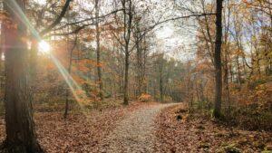 en vandring på Hisingen för kropp och själ