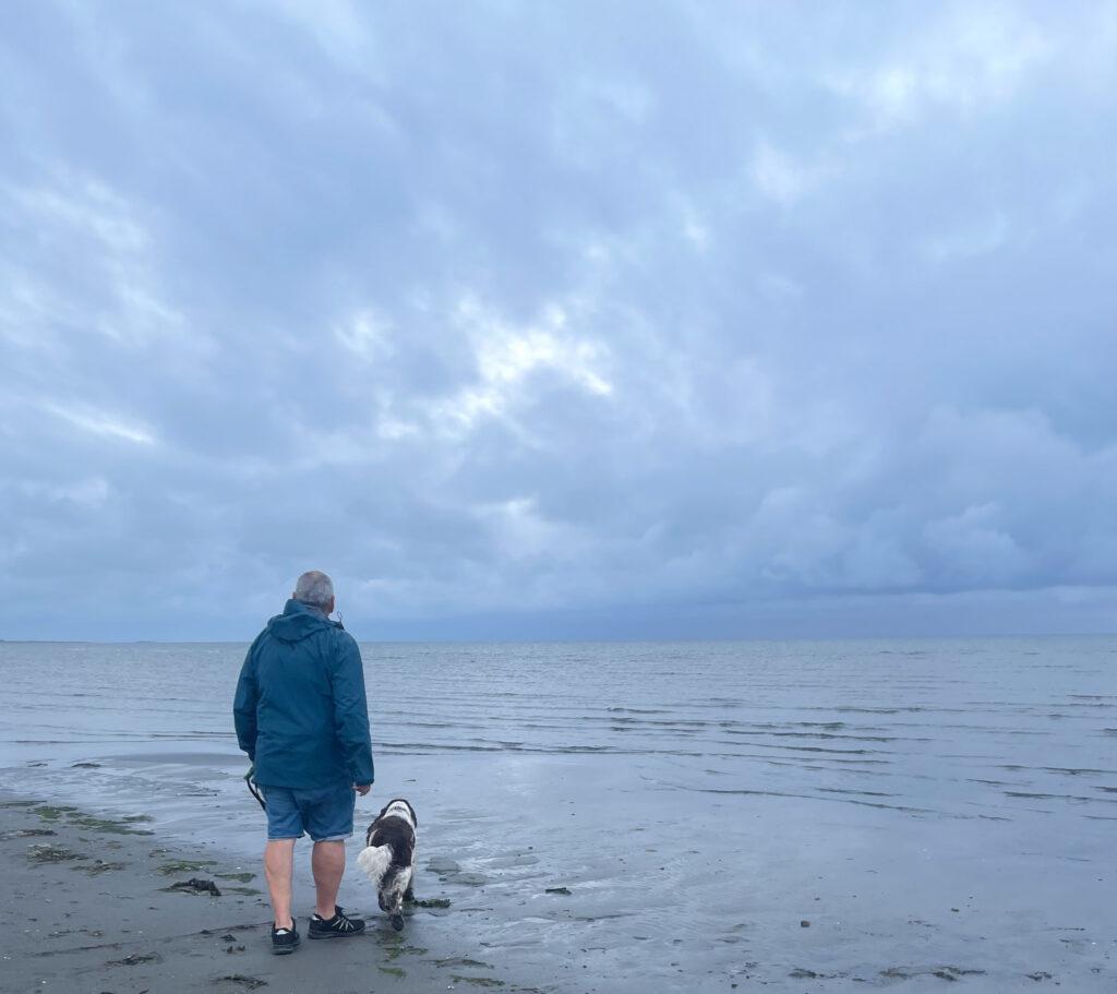 Och därför älskar jag alla väder, springer spaniel, promenad